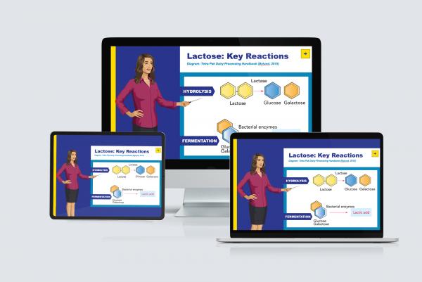 E-Commerce platform case study
